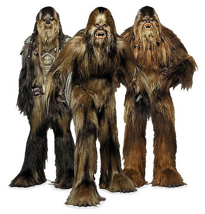 wookiee star wars wiki fandom powered by wikia. Black Bedroom Furniture Sets. Home Design Ideas