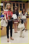 Frenemies-official-pics-24