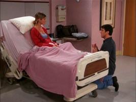 Joeys proposal
