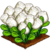 Marshmallow Crop-icon