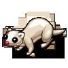 White Ferret-icon