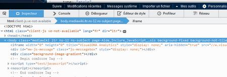 Firefox - Inspecteur.png