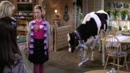 Fuller House S01E11 Screenshot 006