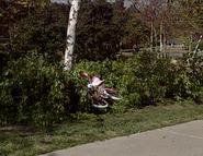 Screen-shot-2012-05-09-at-2.10.32-AM