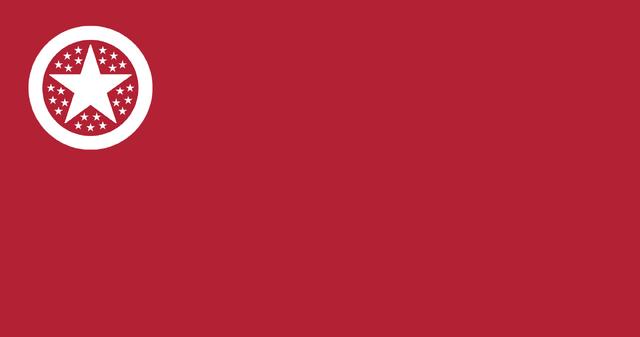 File:MARS FLAG.png