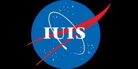 Flag of iuis