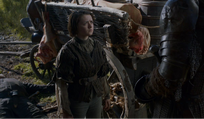 Arya - The Rains of Castamere (episode)