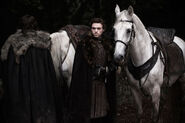 Robb & his horse