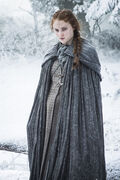 Sansa Season Six Snow