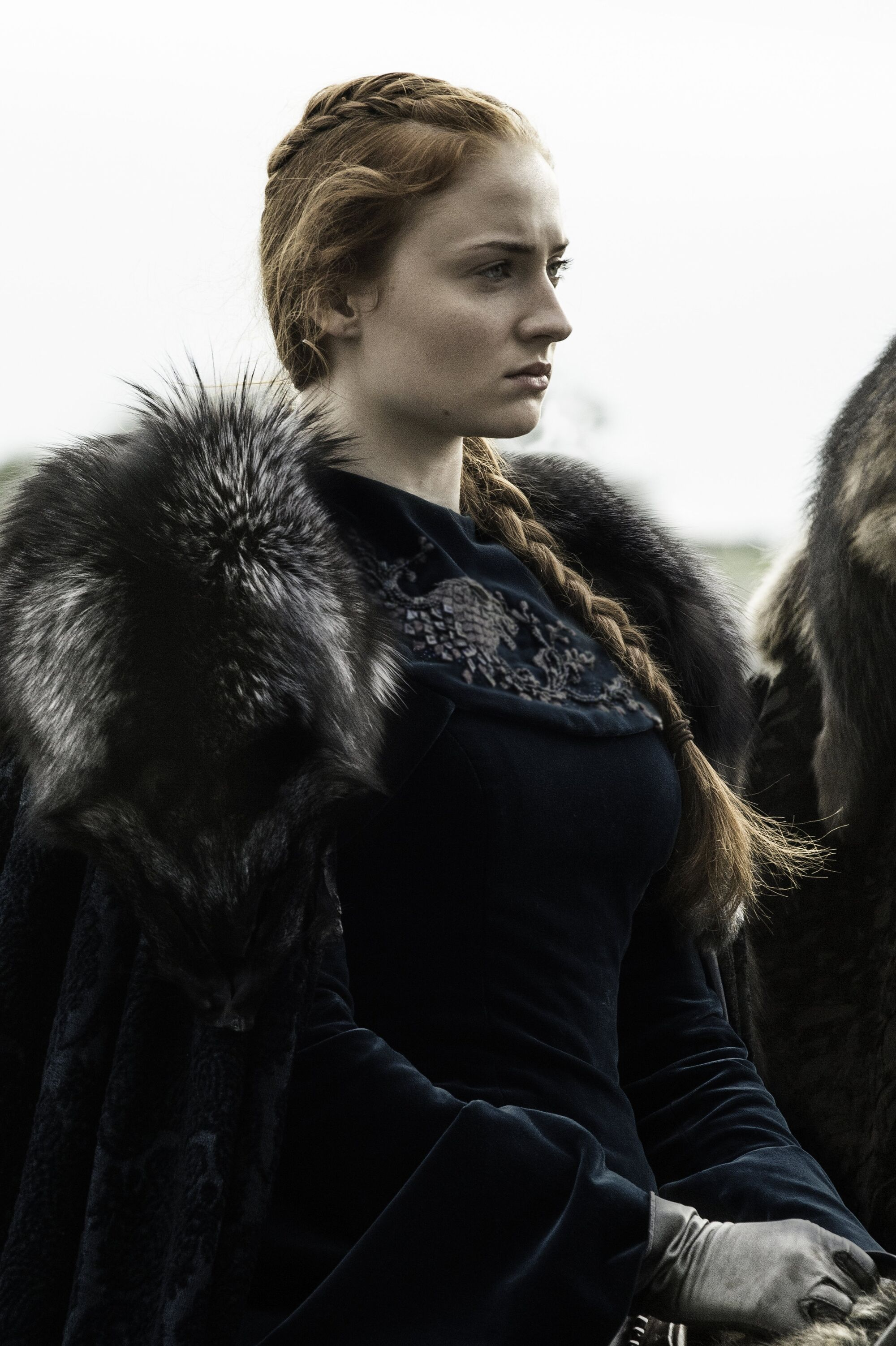 Sansa Stark | Game of Thrones Wiki | Fandom powered by Wikia