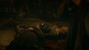 Robb falls dead