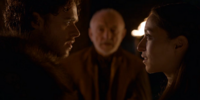 Robb and Talisa Stark