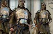 Kingsguard 606 armor