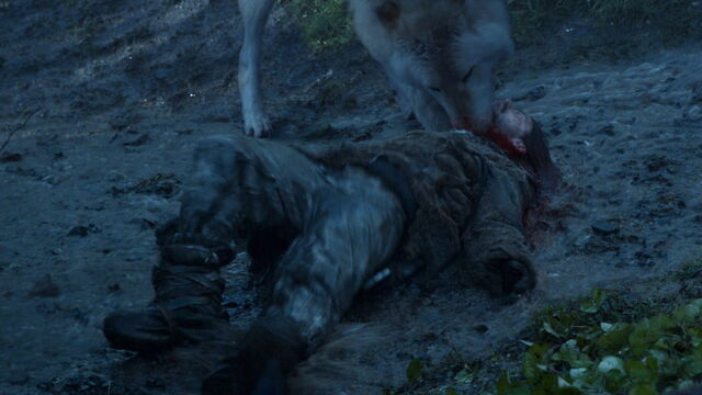 File:Summer attacks Wildling.jpg