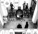 Chapter 239