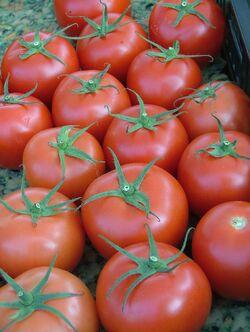 Tomatoes Red Cherry