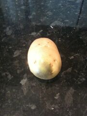 Potato Greening