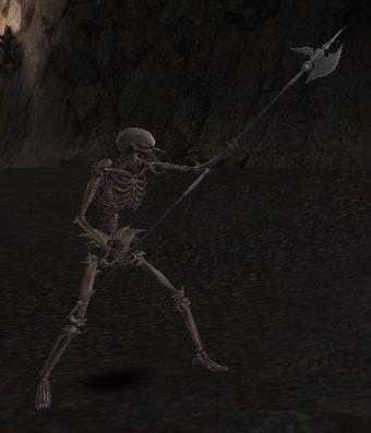 File:Skullic Lanceman (lvl 94).jpg