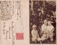 Winblad Cuba 10a