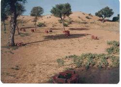 Churu Desert1