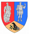 Actual Hunedoara county CoA.png