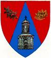 Actual Ilfov county CoA.png