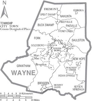 Map of Wayne County North Carolina With Municipal and Township Labels
