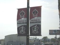 Anaheim-streetbanners-ducksangels