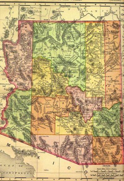 Arizona1895