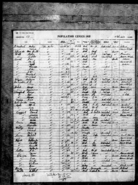 1935 census Lattin Florida