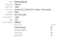 1885 census Burke Kane