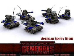 American Sentry