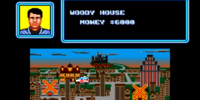 Case: Woody House