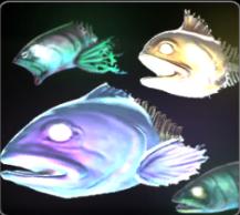 File:DeadFishFlierprofile.png