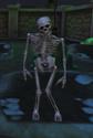 DancingSkeletoninGBTVGSVsc01