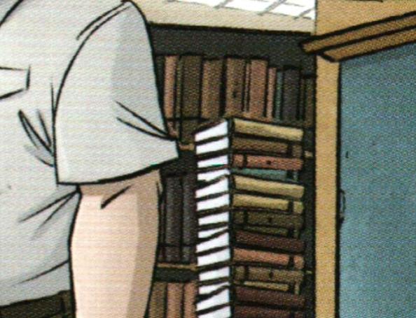File:SymmetricalBookstackingIDW11.jpg