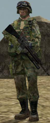 File:US Army.png