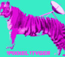 PixxelTyger