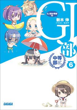 Novel junior 6