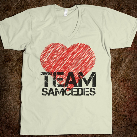 File:Team Samcedes.png