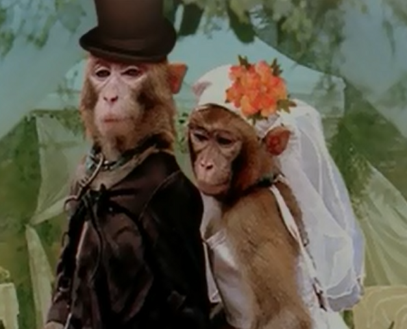 File:MonkeysRHGS.png