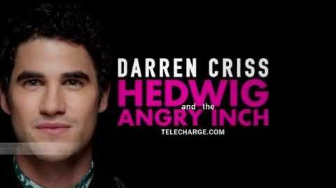 Darren Criss is HEDWIG Hedwig and the Angry Inch