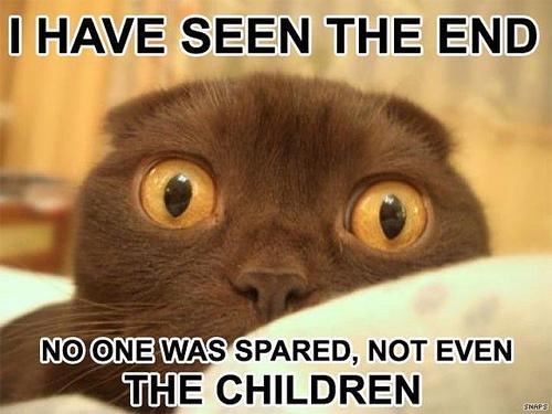 File:Theendcat.jpg