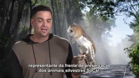 Mark Salling em anúncio da Wildlife Care of SoCal PSA