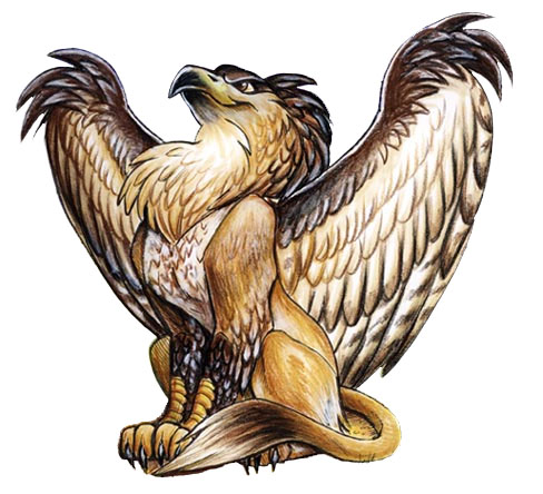 Griffin gods goddess wiki fandom powered by wikia - A picture of a griffin the creature ...