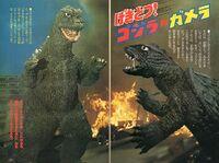 Godzilla vs. Gamera