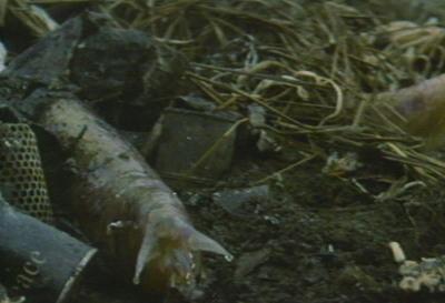 File:Last Days of Planet Earth - Monsters - Giant Slugs.jpg