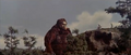 King Kong vs. Godzilla - 36 - Look At That Lizard