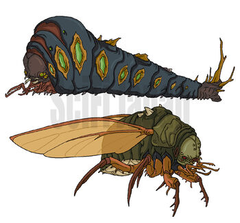Megapede and Cicada