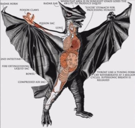 File:Gamera - 3 - vs Gyaos - 99999 - 31 - Gyaos Biology With Text.png